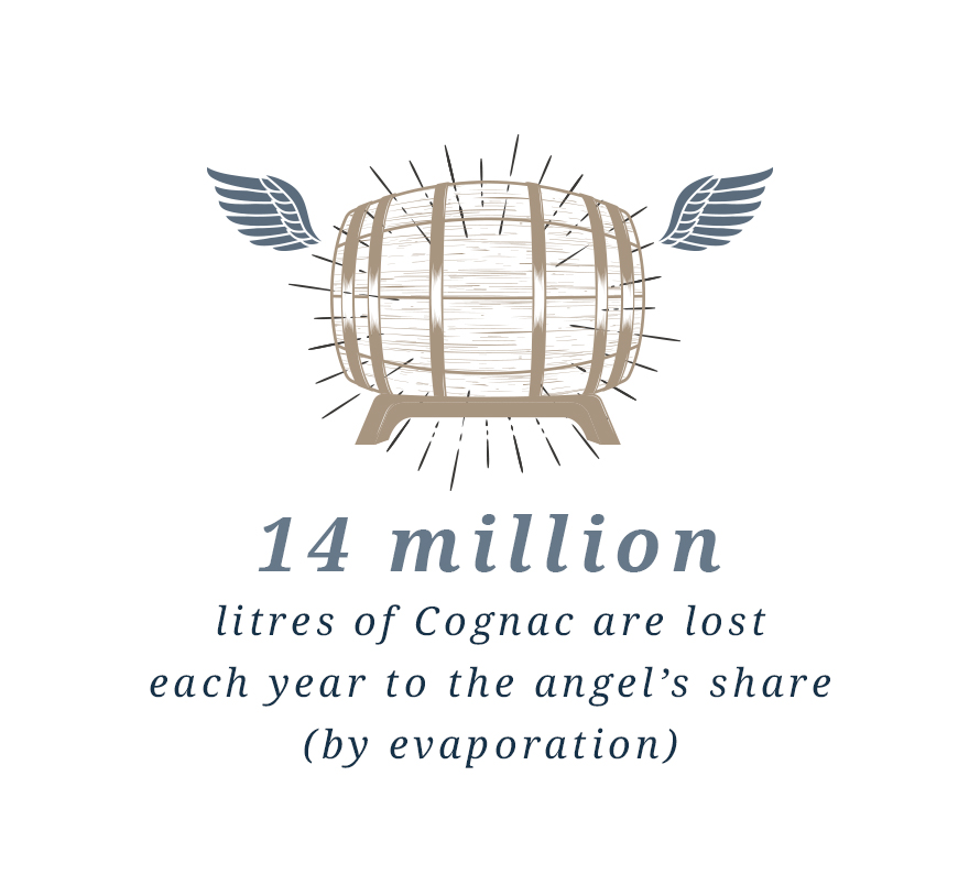 14 million litres of Cognac are lost each year to the angel's share (by evaporation).
